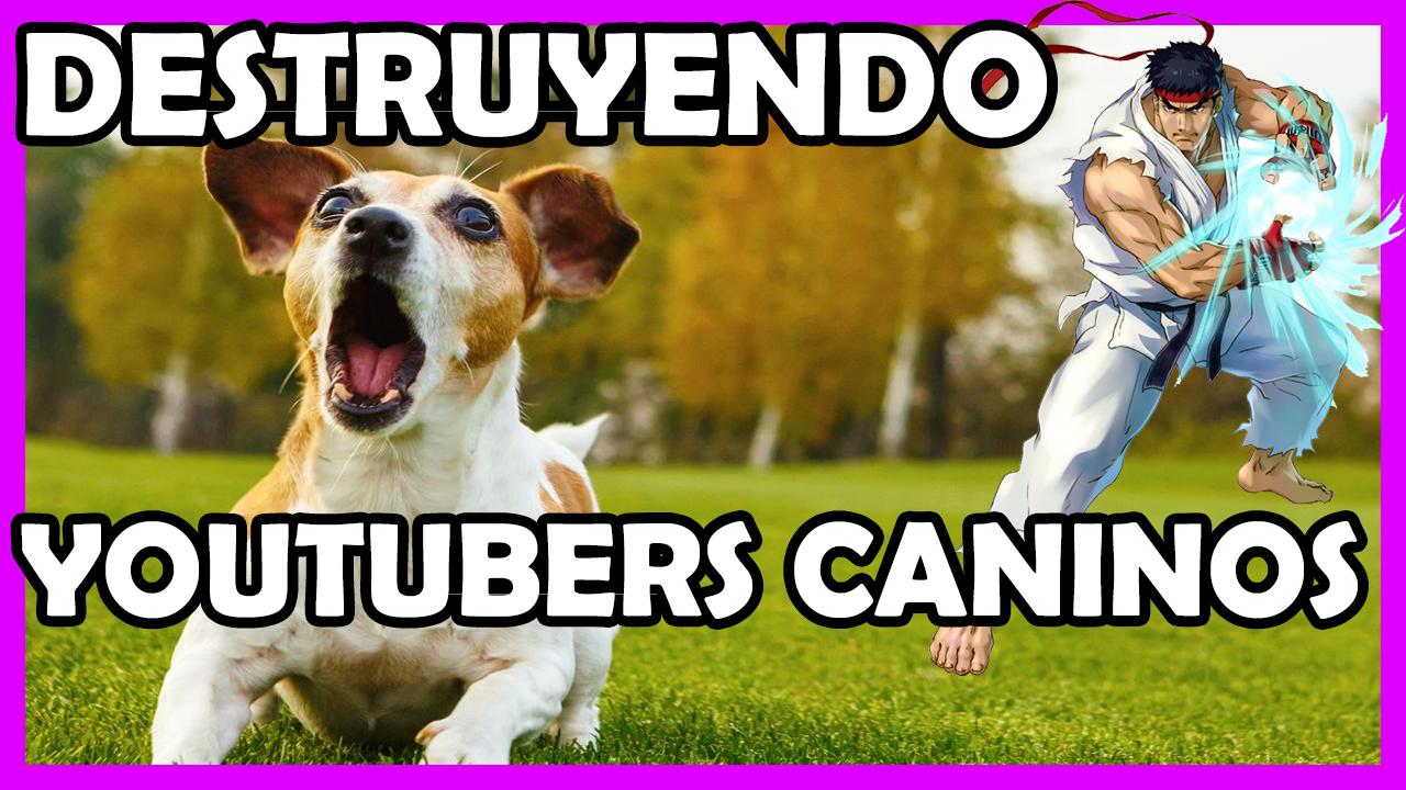 Adiestradores Caninos Youtube