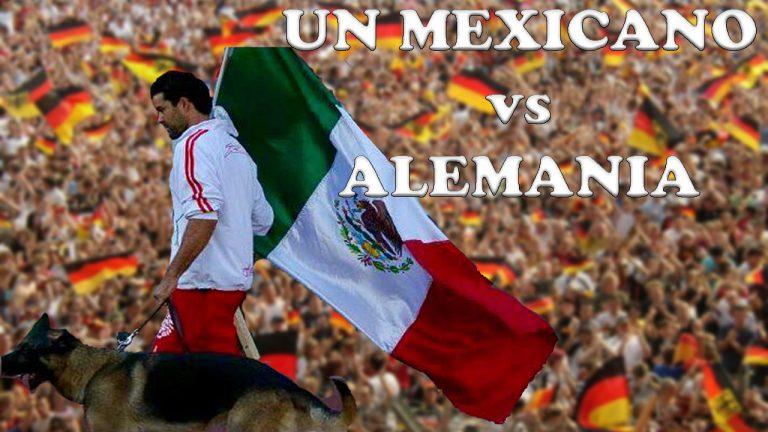 Adiestrador Mexico Perros