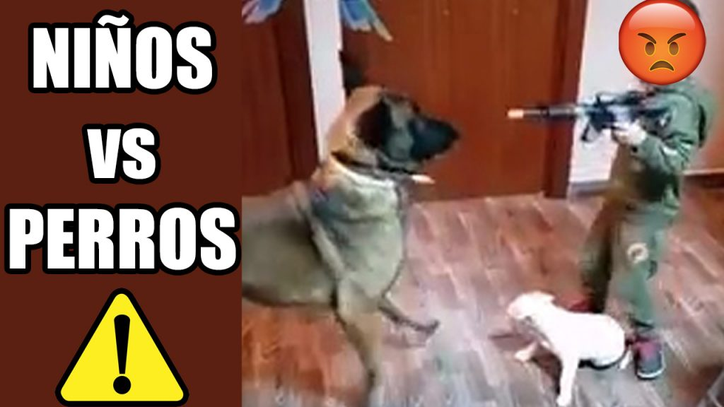 ataques de perros a niños